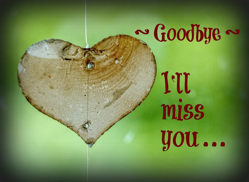 Goodbye. I'll miss you.