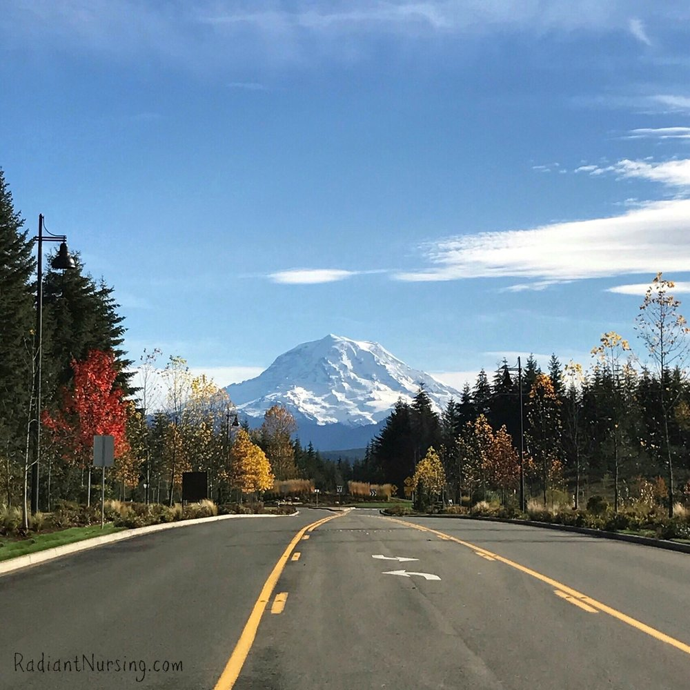 The people of the Seattle area love seeing views of their majestic Mt. Rainier when they're out and about.