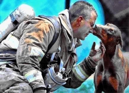 Dog and human rescuers at 9/11 Ground Zero.