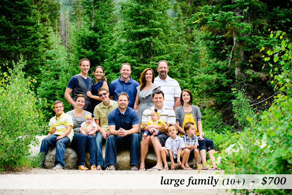 FamilyPhotosPrices