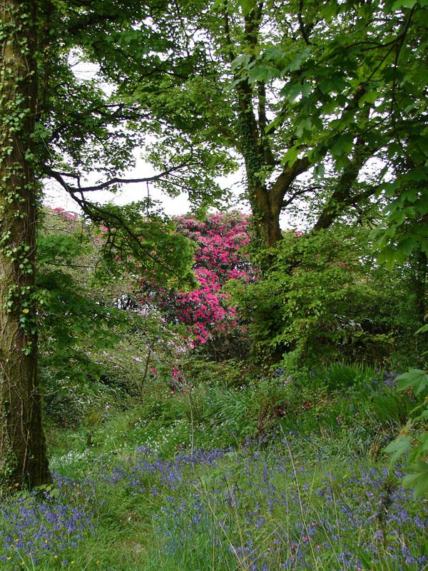 Rookery Gardens.jpg