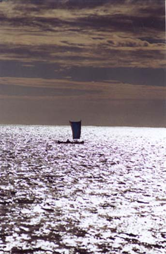 Pirogue Silver Light.jpg