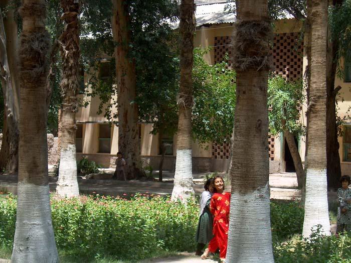 Jalalabad University.jpg