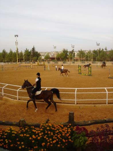 Al Assad Stadium 2.jpg