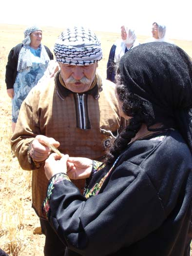 Jordanian Syrian Women Farmer Exchange 2.jpg