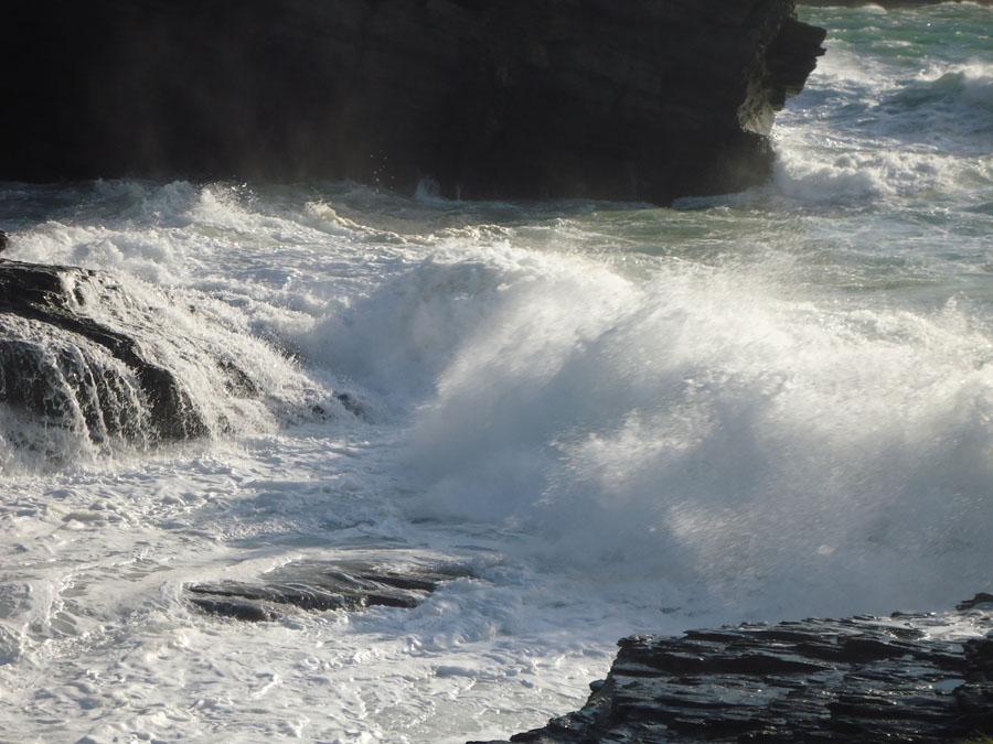Wild Waves.jpg