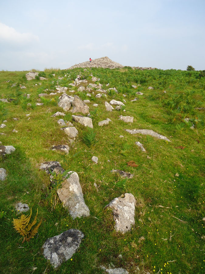 Neolithic Processional Pathway Cannonstone to Barrow.jpg
