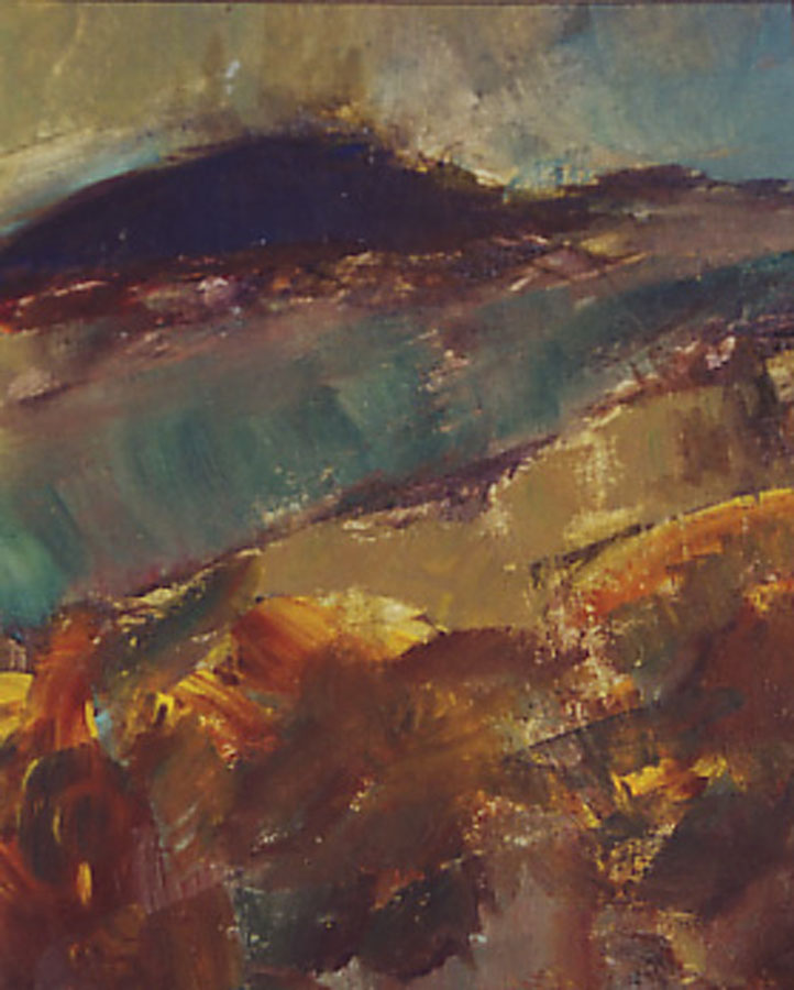 Moor Landscape.jpg