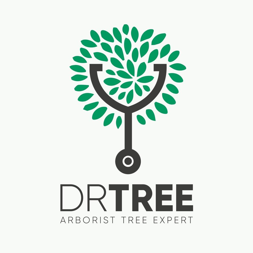 DR TREE LOGO