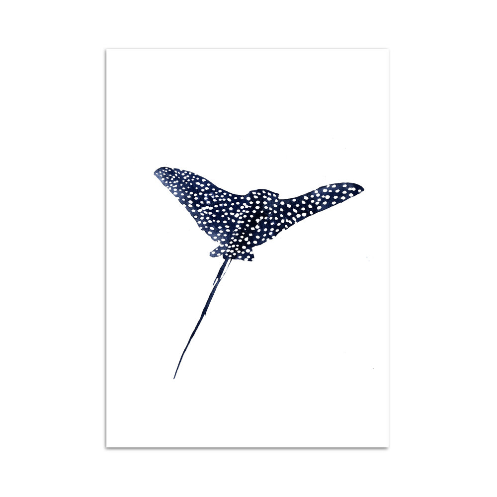 raie léopard aquarelle studio le Héron