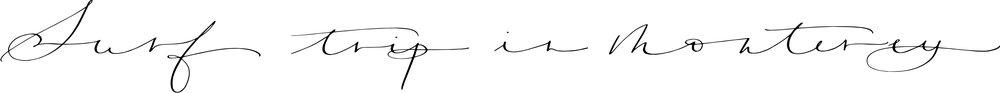 monterey script.jpg