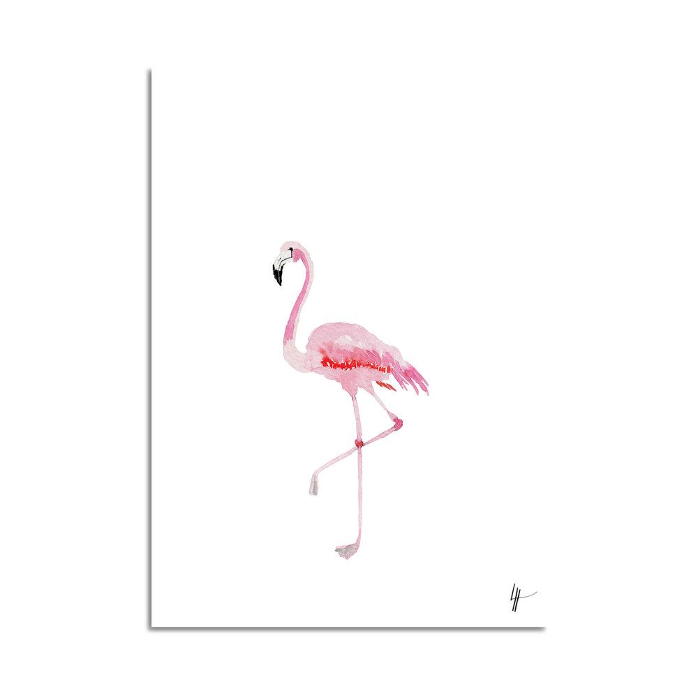 flamingo aquarelle studio le Héron