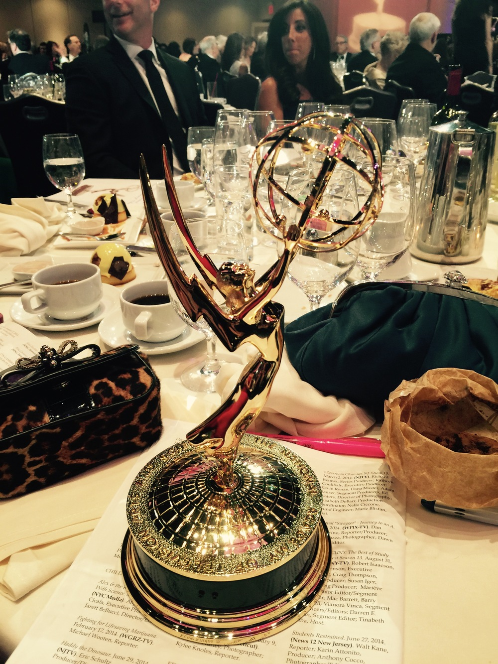 New York Emmy Award