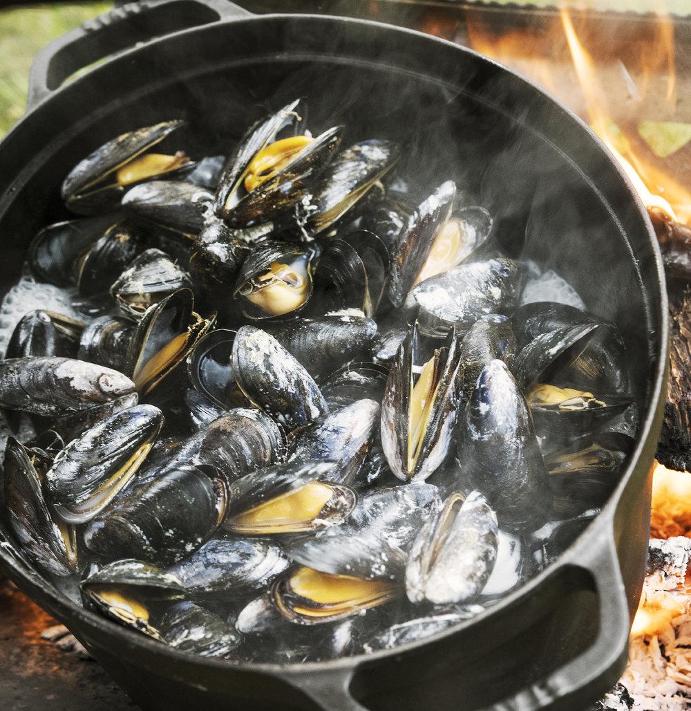 musslor fyrkant.jpg