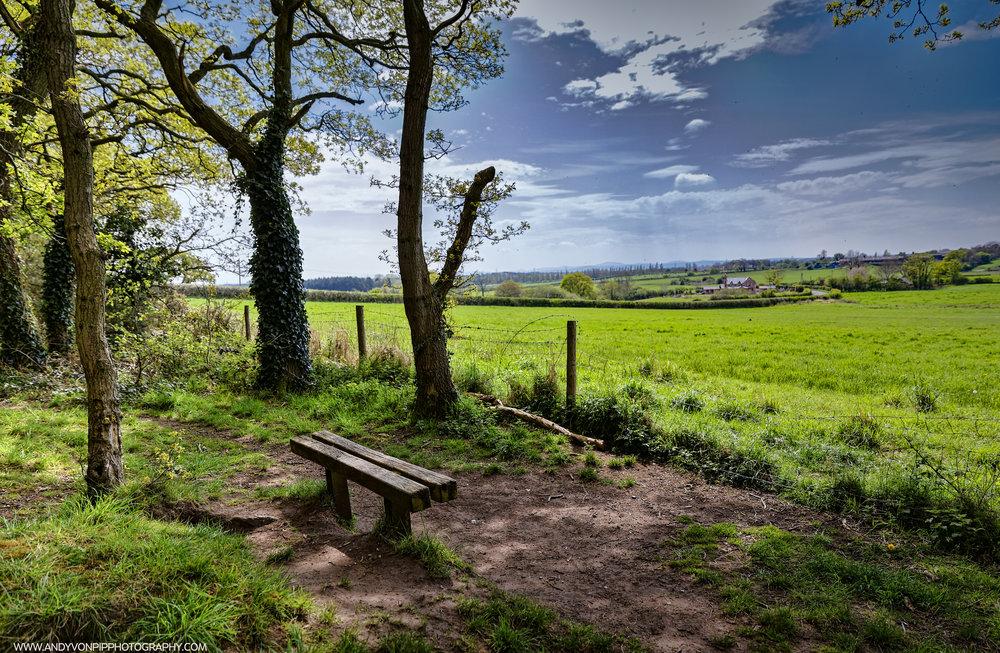 bench_view.jpg