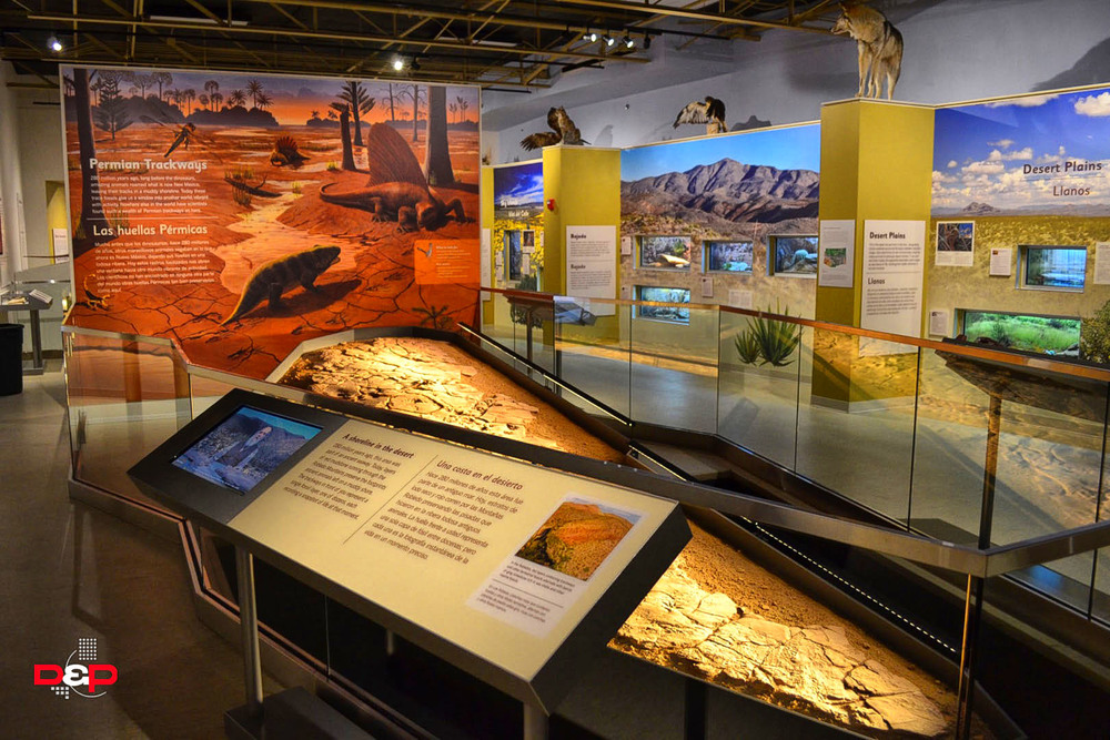 Museum Of Nature And Science Las Cruces