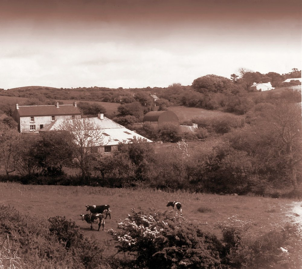 Dyffryn Mill
