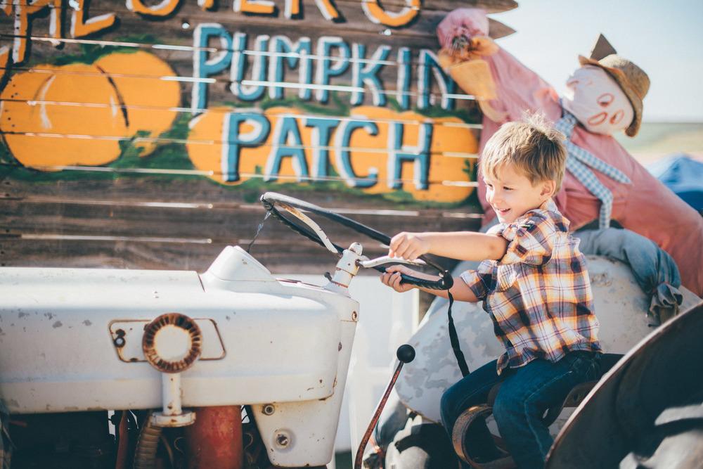 Pumpkin Patch Birthday