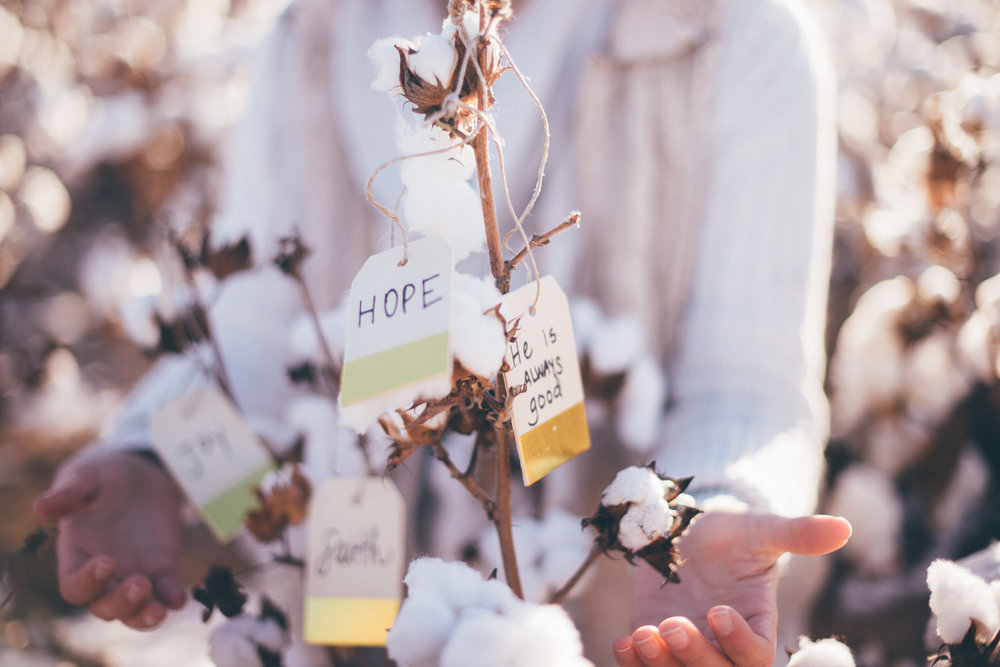 Hope in the Midst of Grief