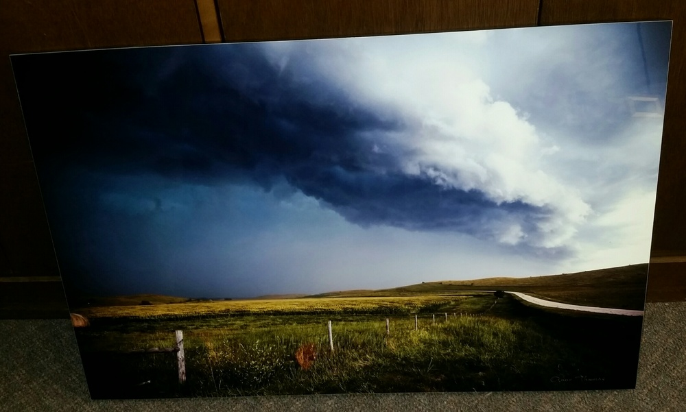 """Sudden Storm"" by Anne ThomasReserve $300"