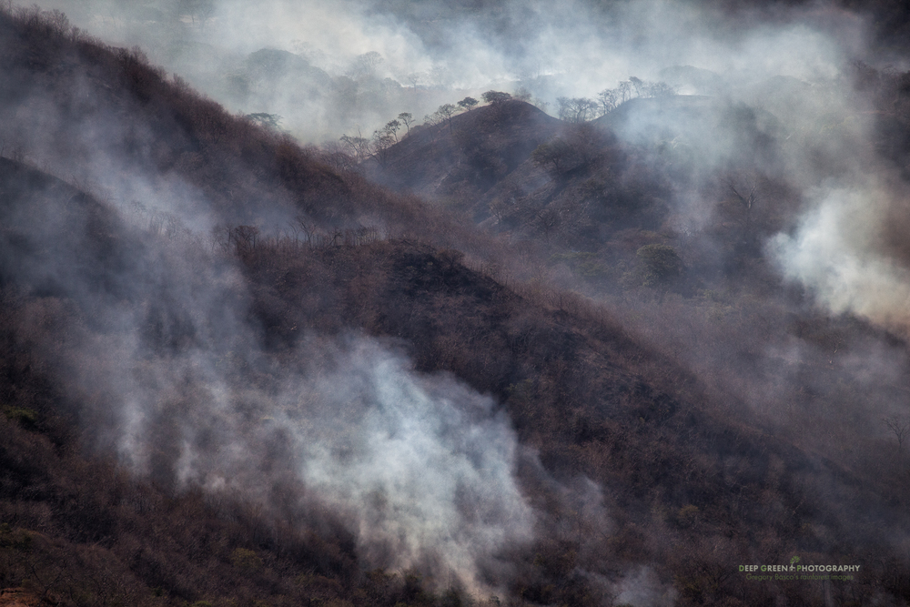 Forest fires smolder in the tropical dry forested hills in Costa Rica's Guanacaste province. Though forest fires occur naturally in tropical dry forests, most recent fires are caused by humans and further threaten one of Central America's most fragile habitats.