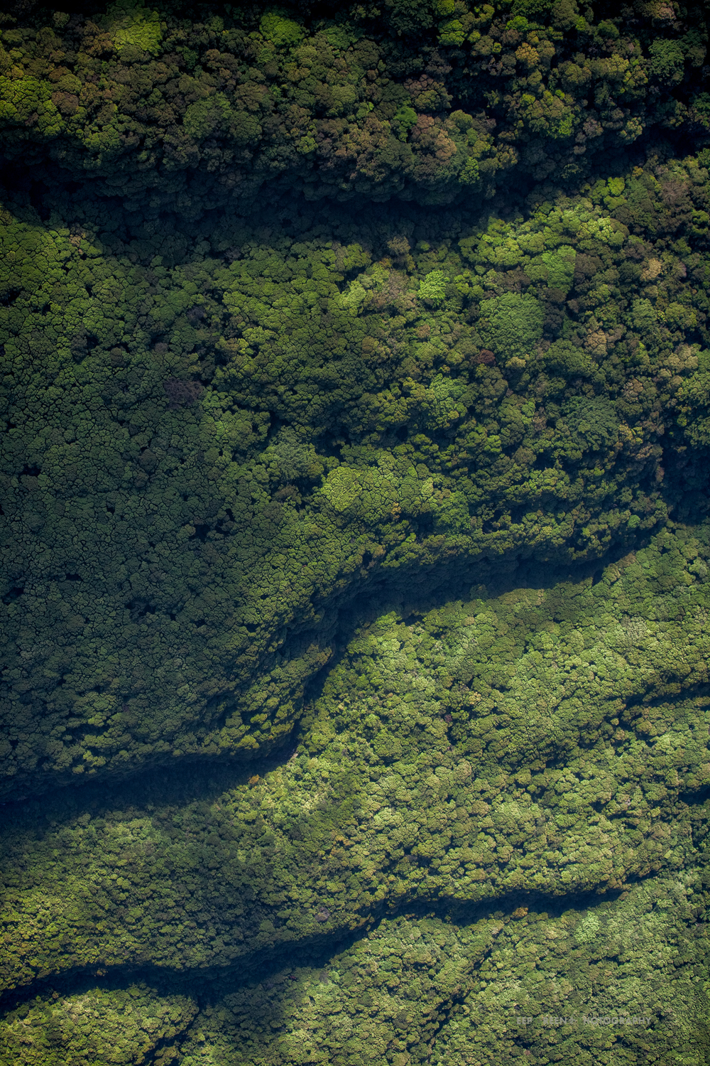 rainforest patterns on the flanks of the Rincon de la Vieja Volcano National Park, taken from an altitude of 6,000 feet in an open gyro plane