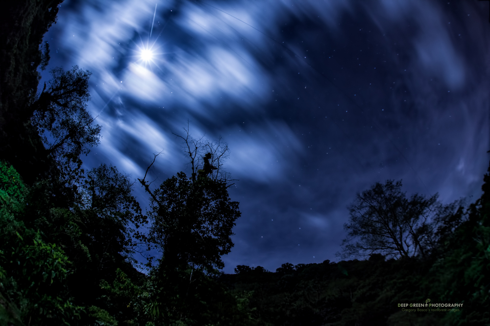 night sky over Juan Castro Blanco National Pak