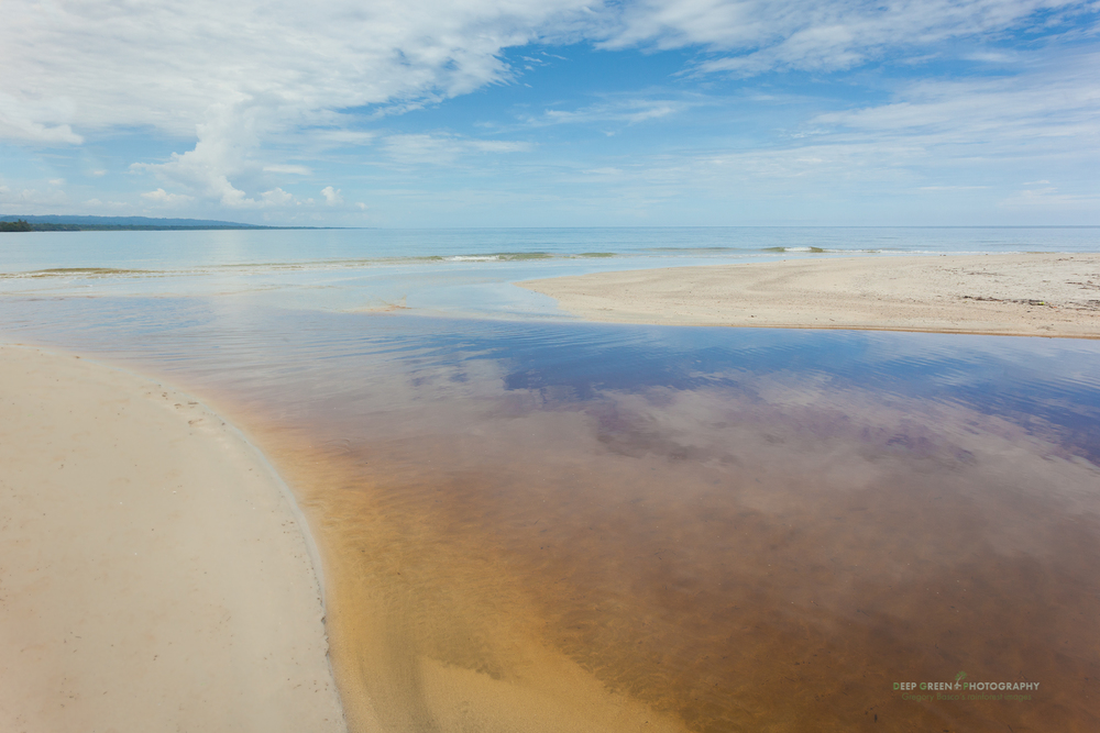 estuary in Cahuita National Park