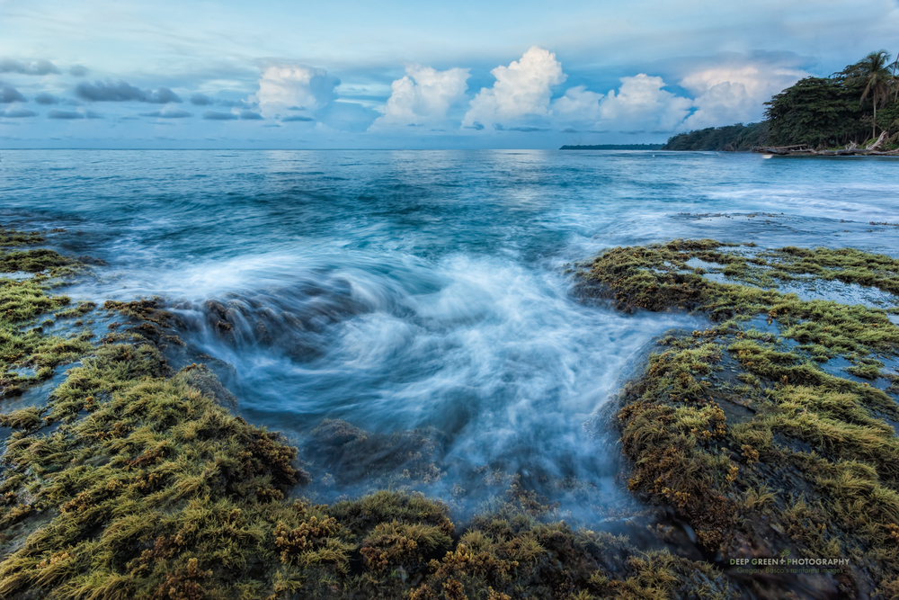 a tide pool at the end of the day just outside of Cahuita National Park