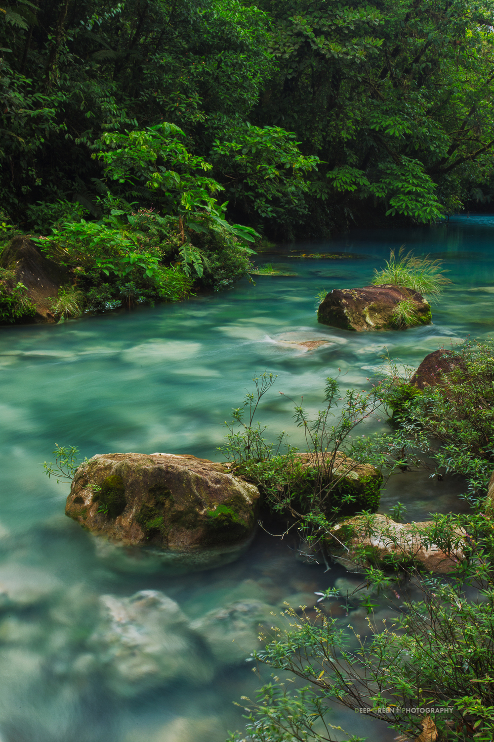 Costa Rica's Rio Celeste, in the Tenorio Volcano National Park, is famous for its sapphire blue waters which result from a mixture of copper, sulphur, and silica colloids.