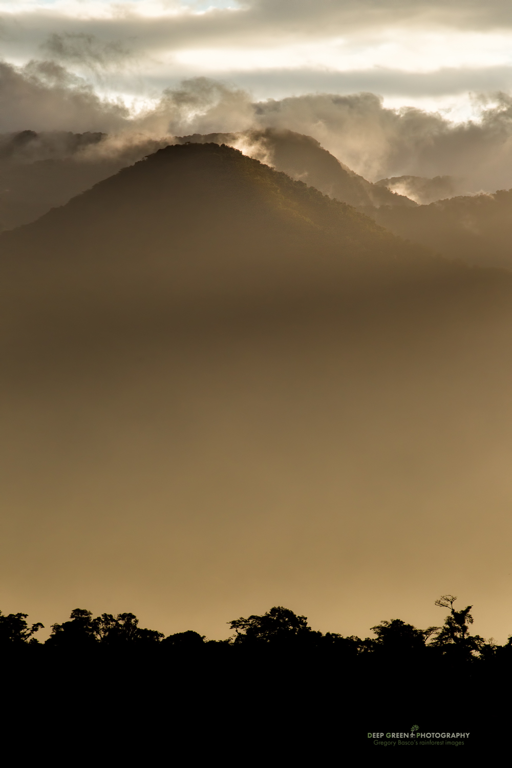 Late afternoon light over the high cloud forests of Costa Rica's Juan Castro Blanco National Park.