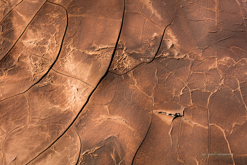 Cracked mud patterns in the Atacama Desert in Chile