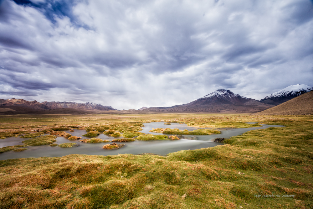 A rare stream creates a lush oasis in the high deserts of the Lauca National Park in Chile