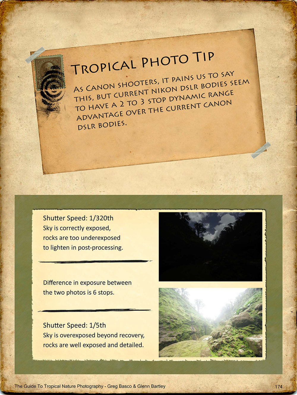 THE-GUIDE-TO-TROPICAL-NATURE-PHOTOGRAPHY-sample6.jpg