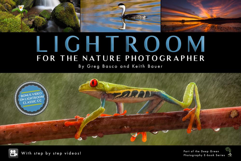 Lightroom-cover-version-final.png