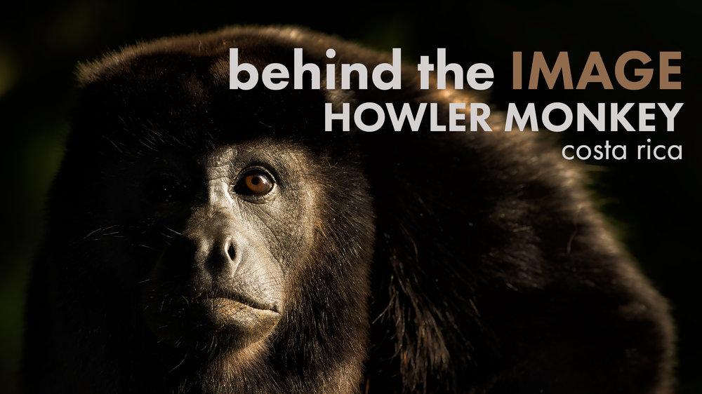 howler-banner.jpg