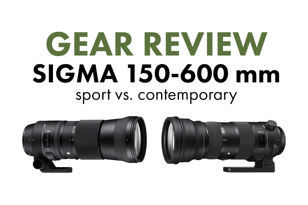gear sigma 150 600 mm sport vs contemporary deep. Black Bedroom Furniture Sets. Home Design Ideas