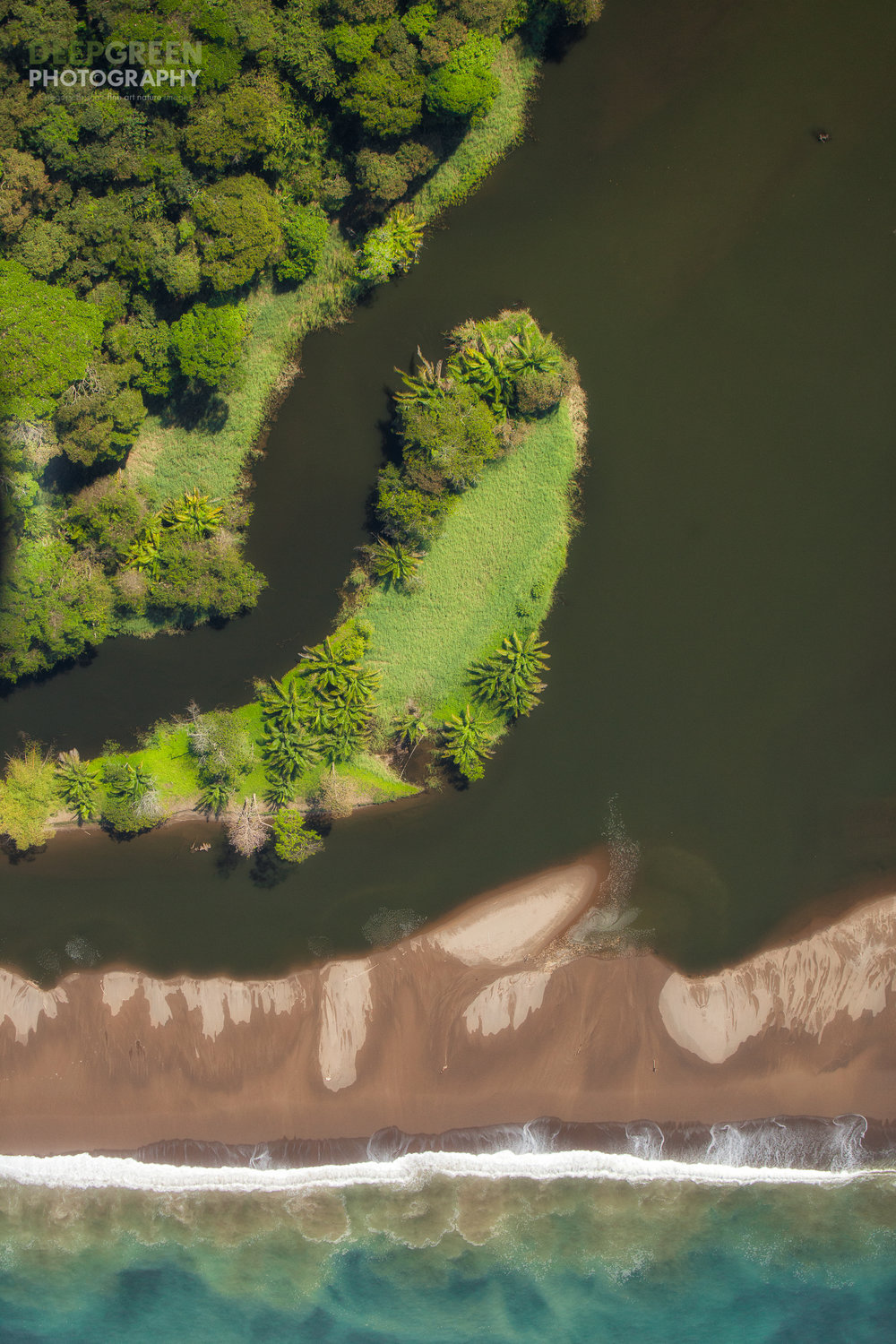 Surf, sand, and mangroves near Drake Bay on Costa Rica's Osa Peninsula, one of the most biodiverse places on the planet