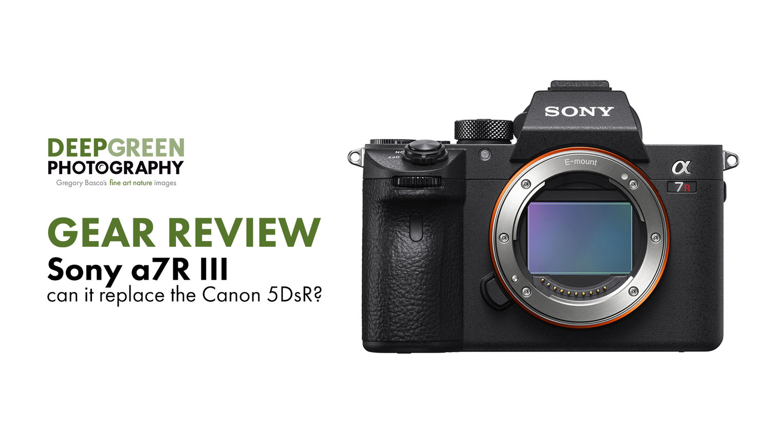GEAR | Sony a7R III, Can it replace the Canon 5DsR? — Deep Green ...