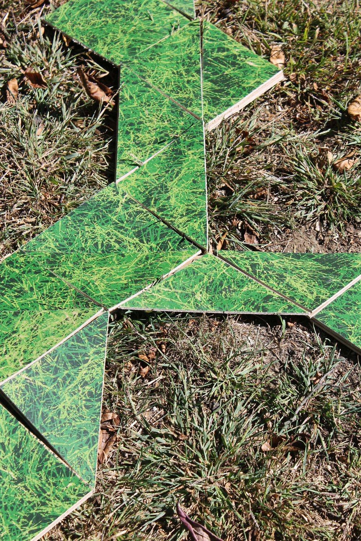 NOTgrass5.jpg