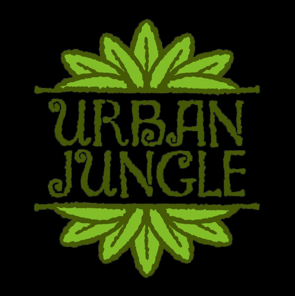 Urban Jungle   Interior Plant Service