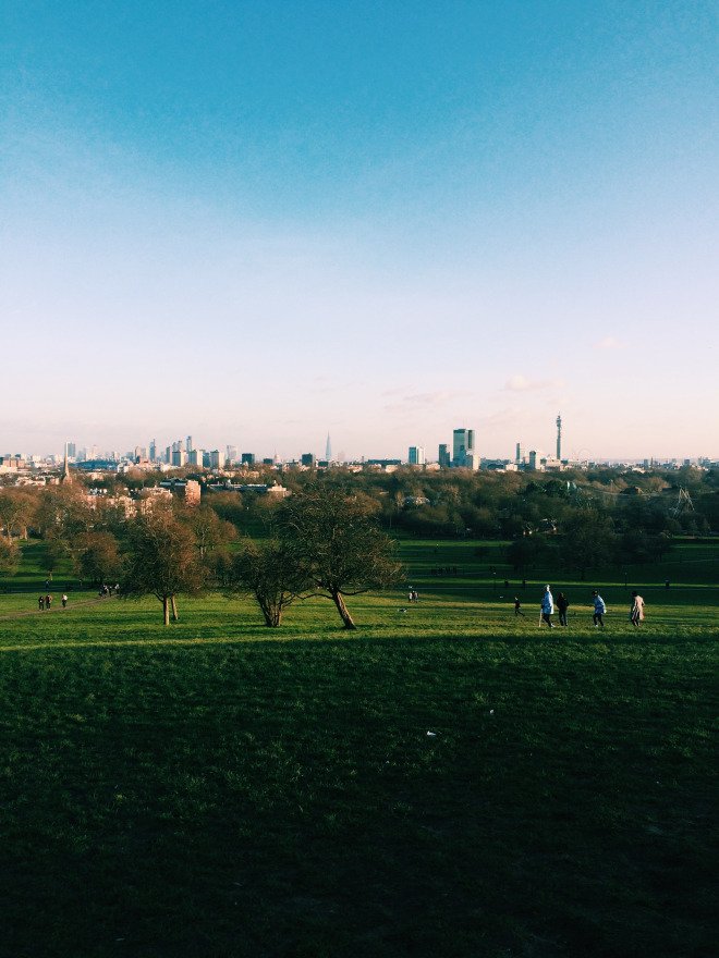 Primrose Hill, Camden
