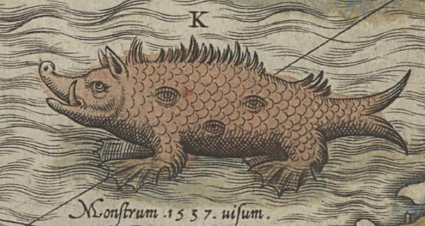 Sea pig.Olaus Magnus's, 1539 Carta Marina.