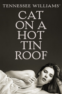 _cat on a hot tin roof.jpg