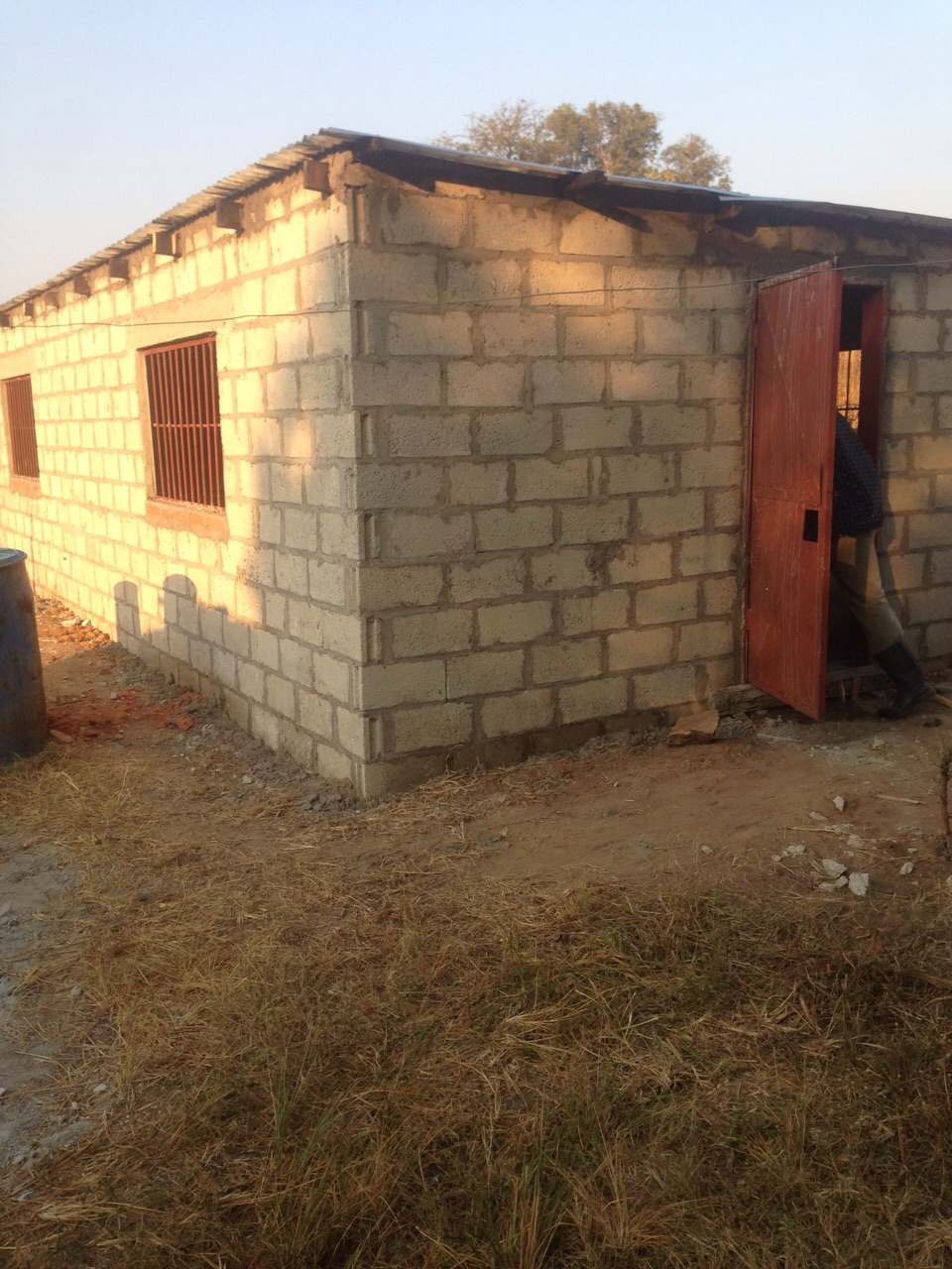 The finished chicken house