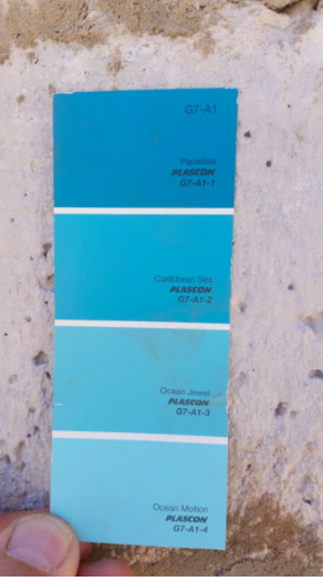 What we DID choose for outside paint color!