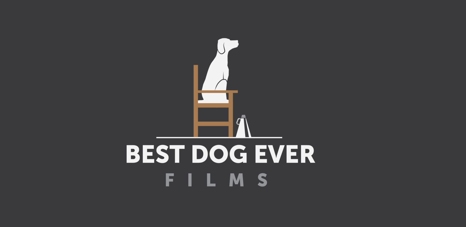 Best Dog Ever Films