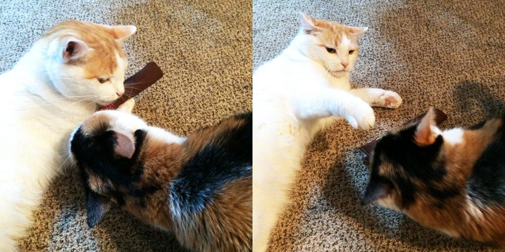 yeowww-catnip-toy