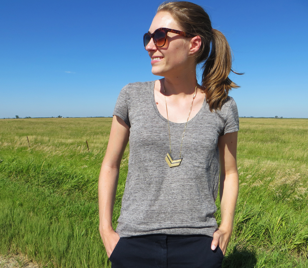 Grey linen tee on the prairie -- Cotton Cashmere Cat Hair