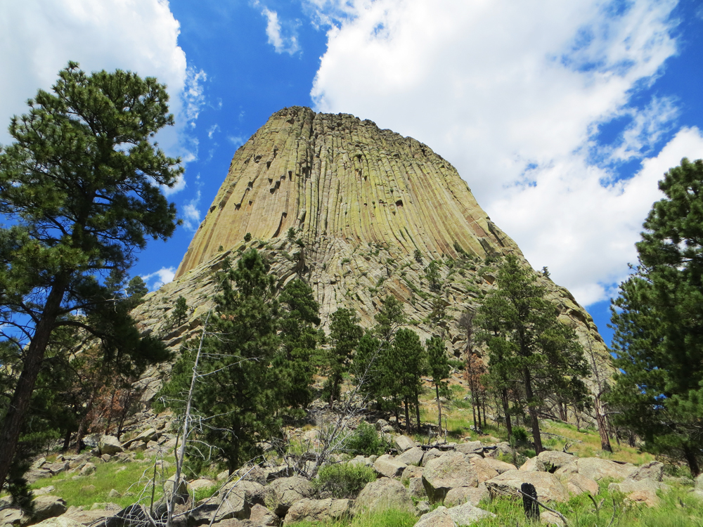 Devils Tower NM -- Cotton Cashmere Cat Hair
